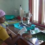 Spirulina production at Nadukuppam