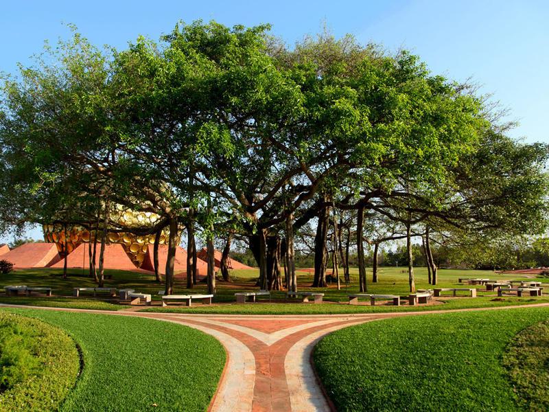 Photographer:web | Matrimandri Banyan Tree