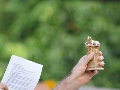 Photographer:web | Mongbra - Auroville Film Festival