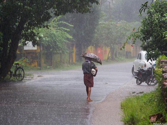 Photographer:web | Monsoon Rain