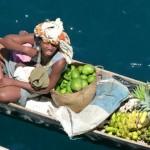 Madagascar fruit vendor