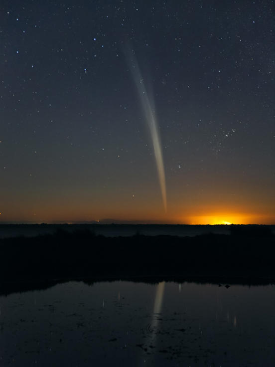 Photographer:web | comet ISON, visible at dawn at E, SE