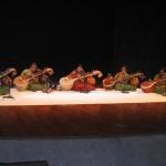 Vaineeka Music