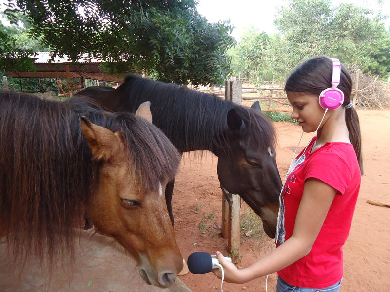 Photographer:Sandrine | Satyamayi recording one horse of Evergreen