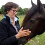 <b>FIRFOL : Le cheval autrement</b>