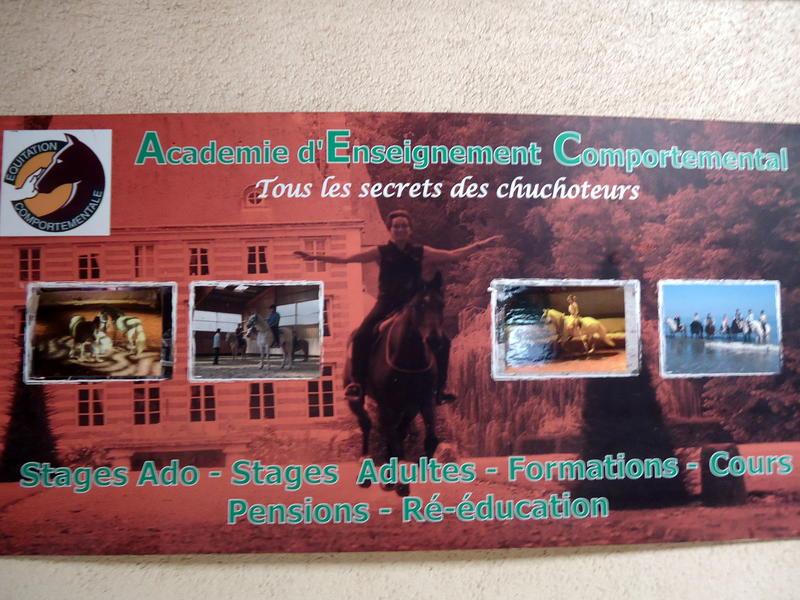 Photographer:Sandrine | L'affiche du centre d'Equitation comportementale de Firfol