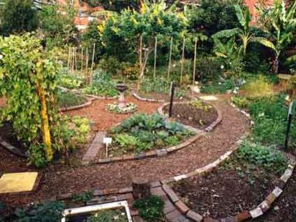 Photographer:web | permaculture garden