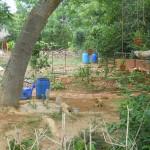 Nursery and Composting area