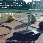 Domestic RAdio Orchestra