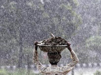 Photographer:web | rain