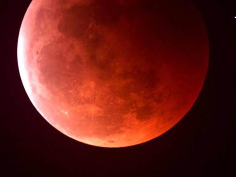 Photographer:web | Blood Moon  - Lunar Eclipse 8th