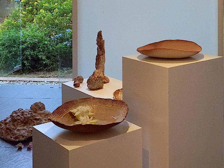 Photographer:Giorgio | white lotuses upgrading fragility of ceramic pieces
