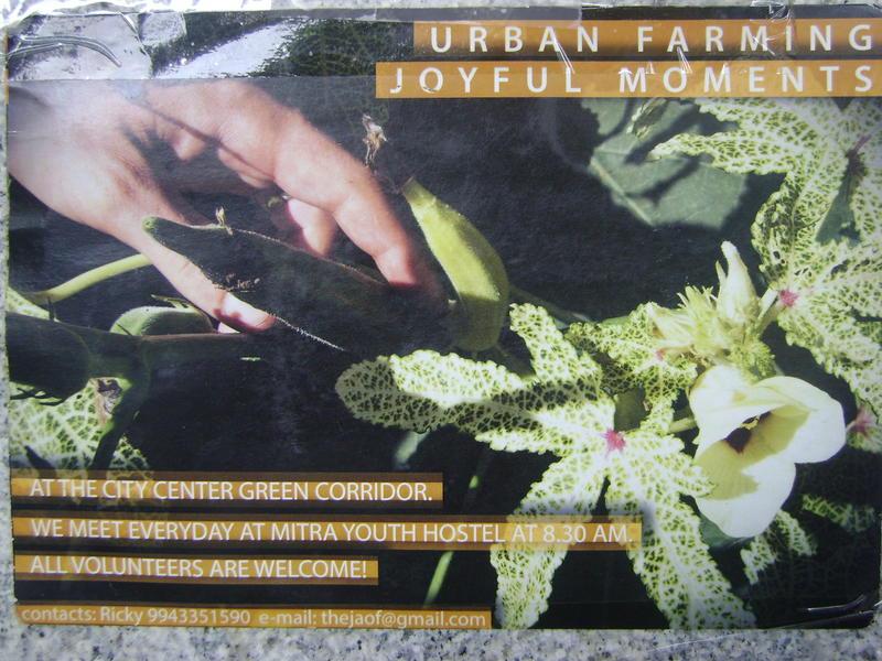Photographer:Zala | Urban Farming at Mitra