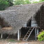 Keet hut. A simple accomodation for volunteers in Buddhagarden