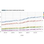 General Evolution of AV Population