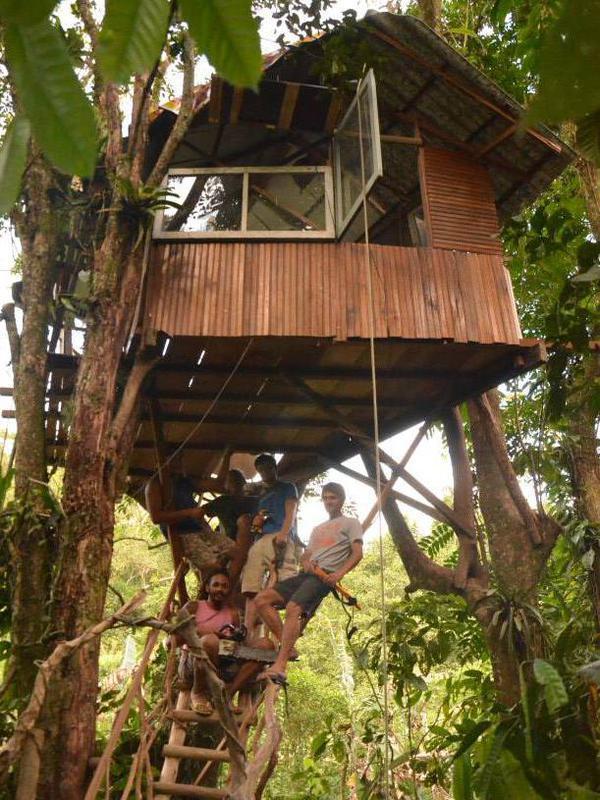 Photographer:Filip | First Tree House in Brasil 2013