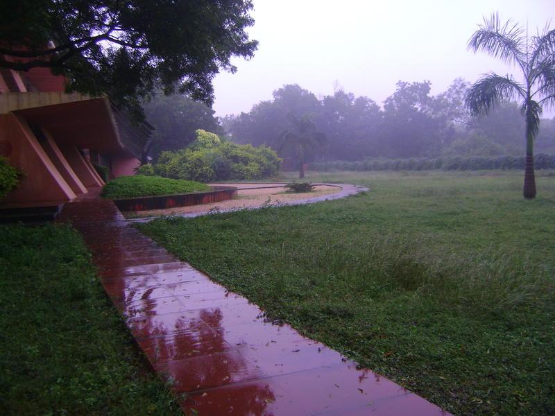 Photographer:Martha | morning rain