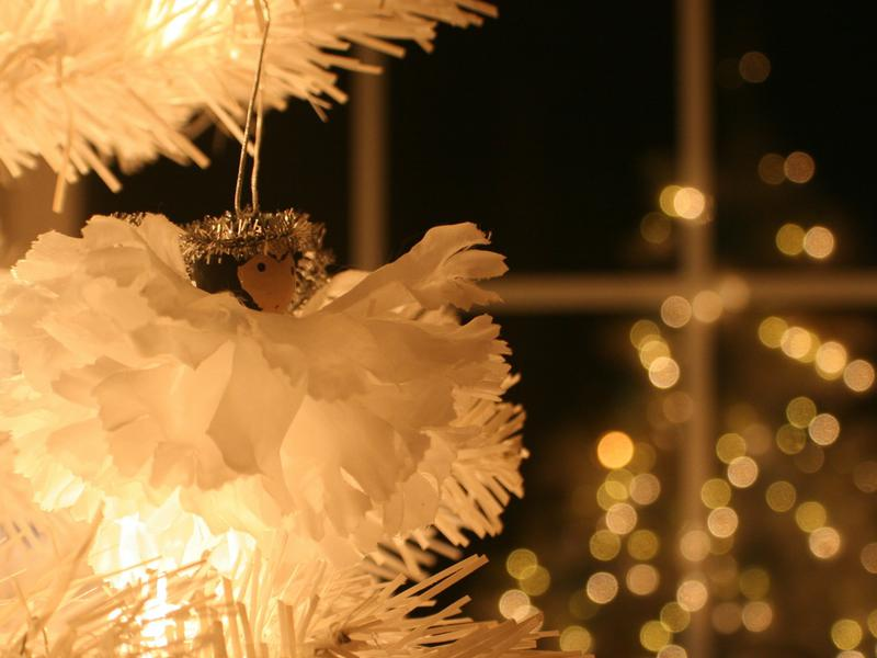 Photographer:web   Happy New Year