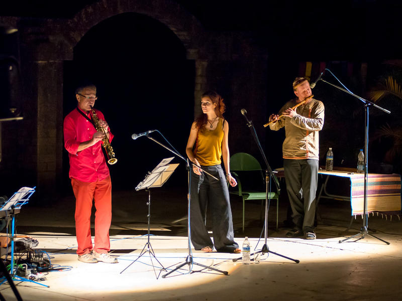 Photographer:Olivier Malcor | Saxophonist Paul, vocalist Clementine and flautist Kees