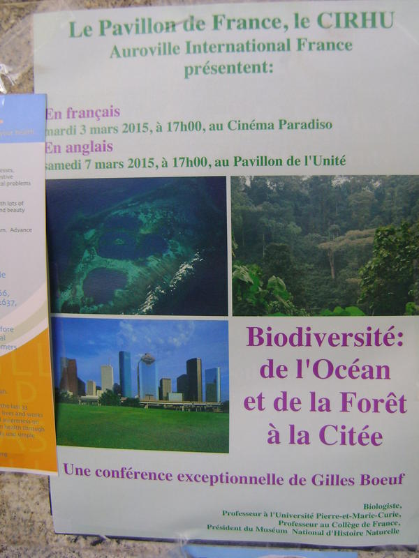 Photographer:web | talk Biodiversity : from the ocean and the forest to the city