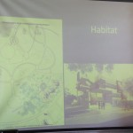 Habital Proposal A