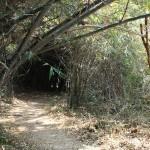 <b>GM on Mangalam Radial- Pony farm</b>