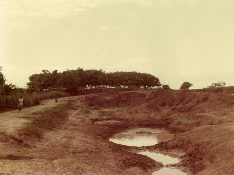 Photographer:Auroville Archives | Bommapalayam- Auroville Road