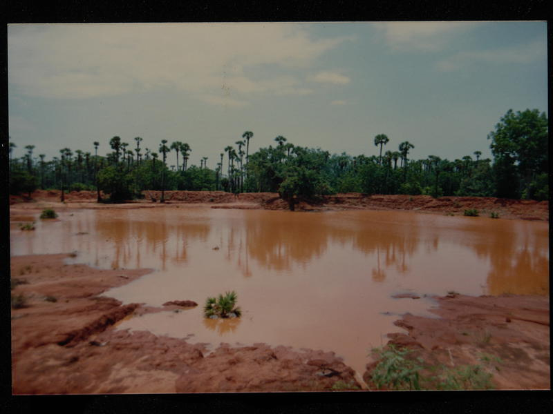 Photographer:Auroville Archives | Water Catchment result