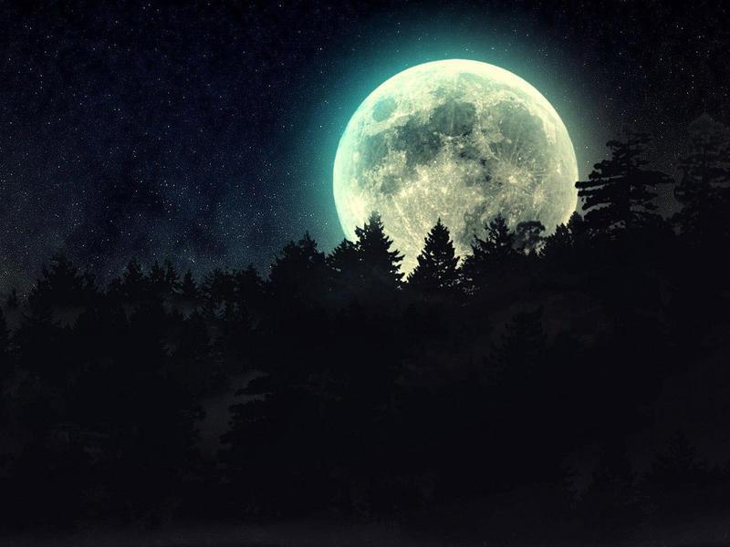 Photographer:web   Full Moon in Sagittarius