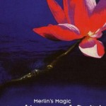 Merlin's Magic - Herat of Reiki