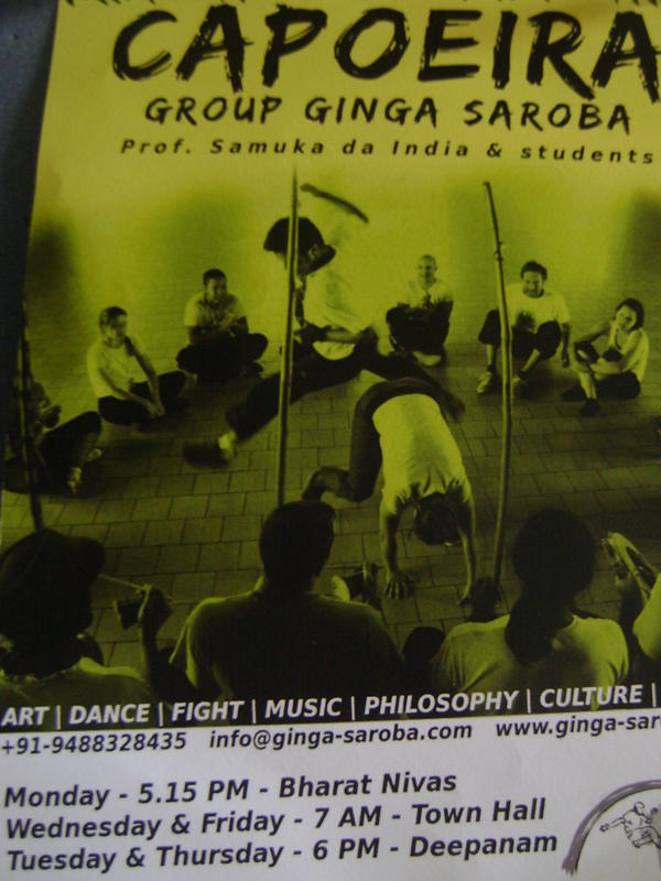 Photographer:Elena | Capoeira classes in Auroville