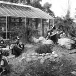 <b>15years of Botanical Gardens</b>
