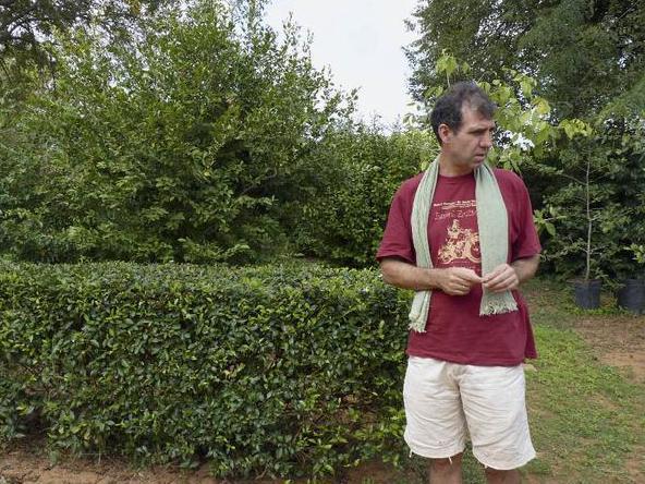 Photographer:web | Paul from Botaincal Gardens