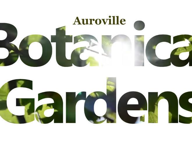 Photographer:web | Auroville Botanical Gardens