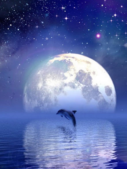 Photographer:web   Supermoon in Pisces