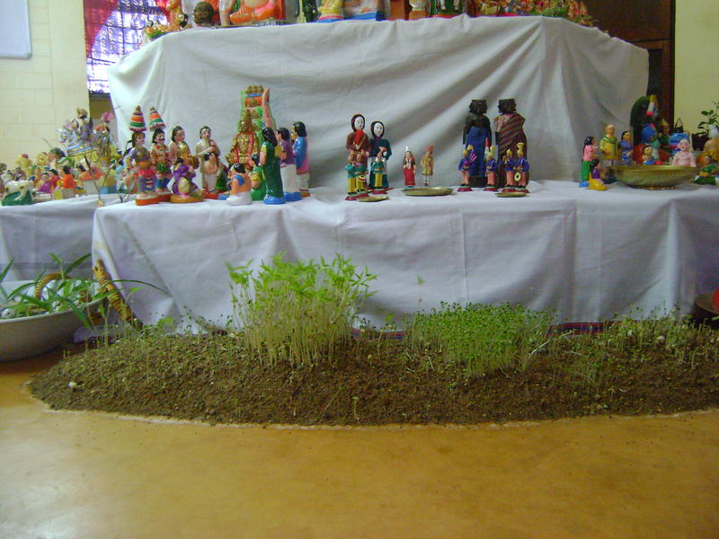 Photographer:Beela | from seeds........to God