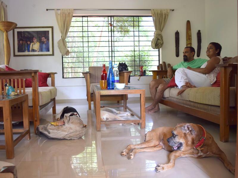 Photographer:Samira Bose | Fudge, Phulki and Kiara are slowly getting comfortable