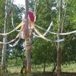 installation at eucaliyptus groove