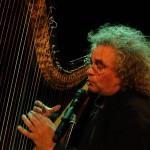 Andreas Vollenweider 2009