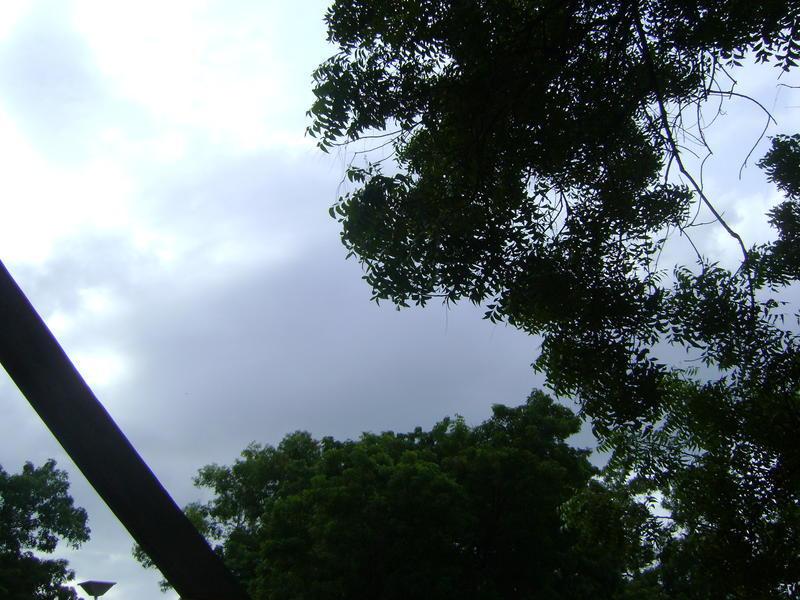 Photographer:Barbara | froecast - heavy rain to floods this week