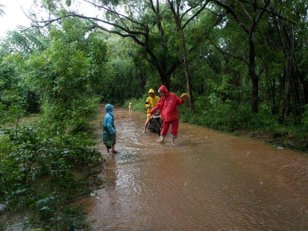Photographer:Anela   mosnoon rain