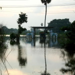 North of Auroville, huge areas are still under water