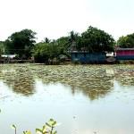 Kuyillapalayam Lake after the big rain