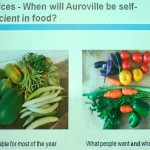 What Auroville farms grow and what consumers ask for