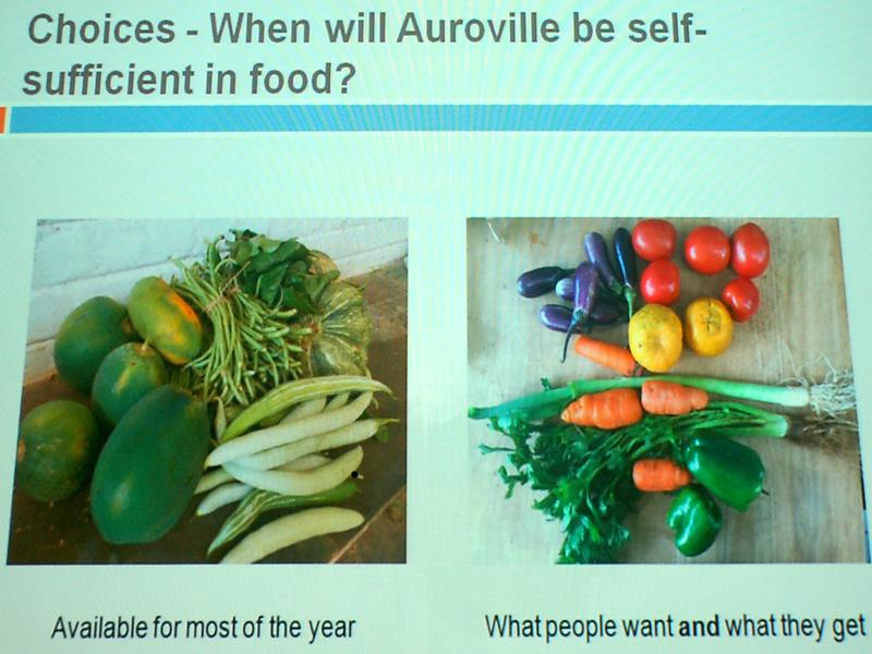 Photographer:Frida | What Auroville farms grow and what consumers ask for