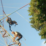 With the flying fox, children could fly from the YC windmill to the tree house.
