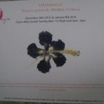 exhibition at Pitanga
