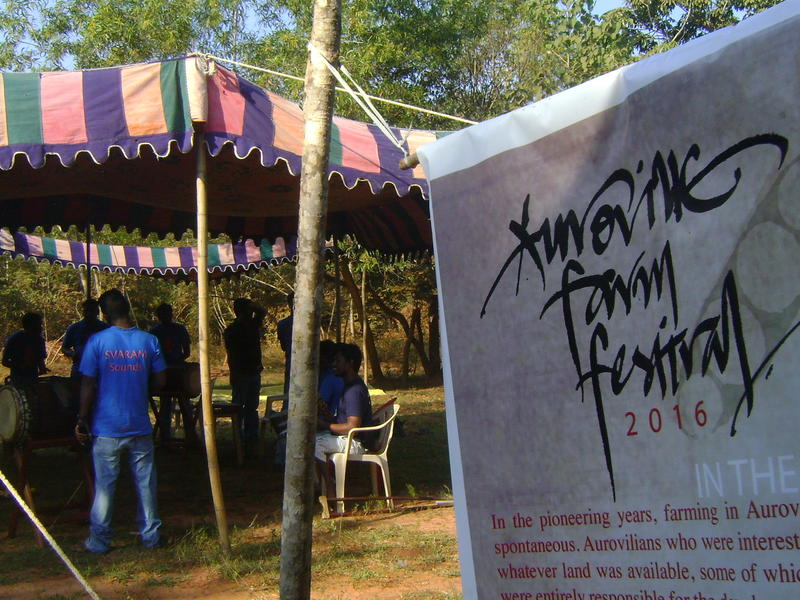 Photographer:Frida | Auroville Farm Festival at the new Foodlink site, near Certitude