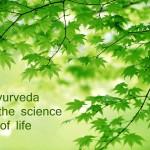 ayurvedic health education