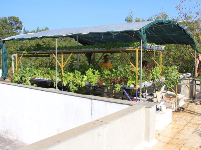 Photographer:Roland | Rooftop Farming in Auroshilpam, Auroville